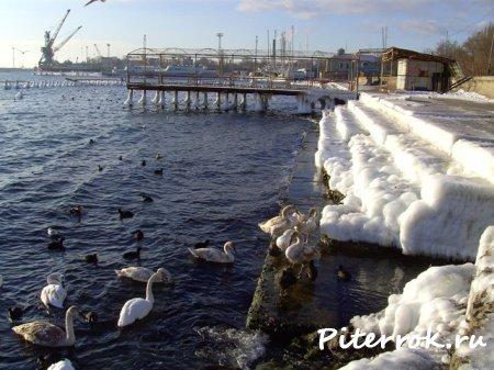 Зима.Евпатория.Украина.